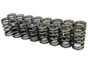 Tomei High Performance Valve Spring Set  ( Part Number: 163057)