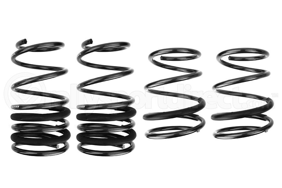 Racecomp Engineering Regular Guy Lowering Springs (Part Number:RG285)