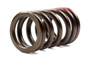 Tomei High Performance Valve Spring Set ( Part Number:TOM 173004)