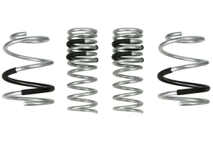 Epic Engineering Lowering Springs ( Part Number:EPI EE-S-WGR-001)