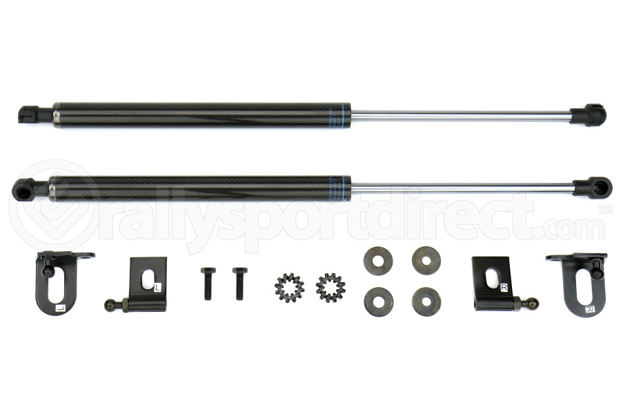ProSport Carbon Fiber Hood Dampers ( Part Number:PRS HD-MITS.EVO 10)
