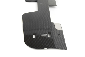 APR Radiator Cooling Plate Carbon Fiber (Part Number: CF-802314)