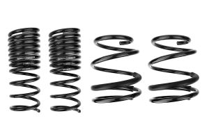Racecomp Engineering Regular Guy Lowering Springs ( Part Number:RCO GR08)