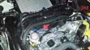 Crawford V3 TMIC Air Oil Separator Black ( Part Number: S0717)